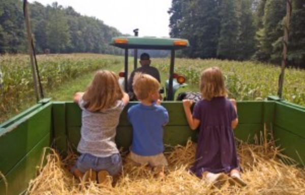 Personal Safety for Children and Adults On The Farm