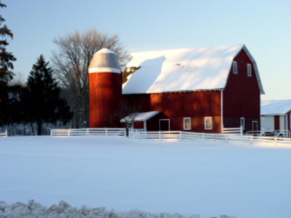 Heavy Snow Loads On Farm Buildings